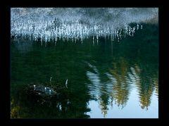 Winter-Beschaulichkeit am Glas-Teich...