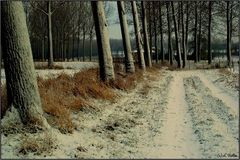 """ Winter """