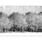 Winter Blues #2