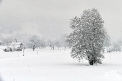 ...Winter - Blues...