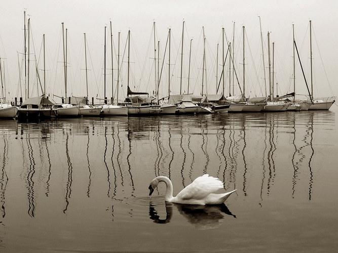 winter boats