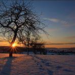 Winter daheim
