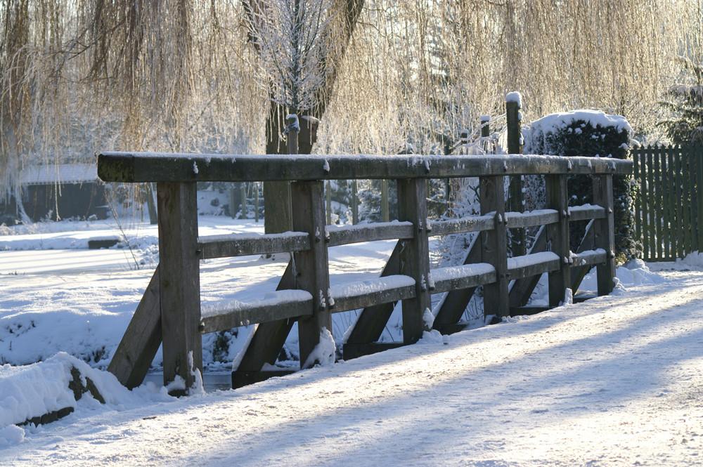 Winter die 4.