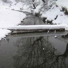 """""""winter dream"""""""