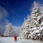 Winter eingeläutet...