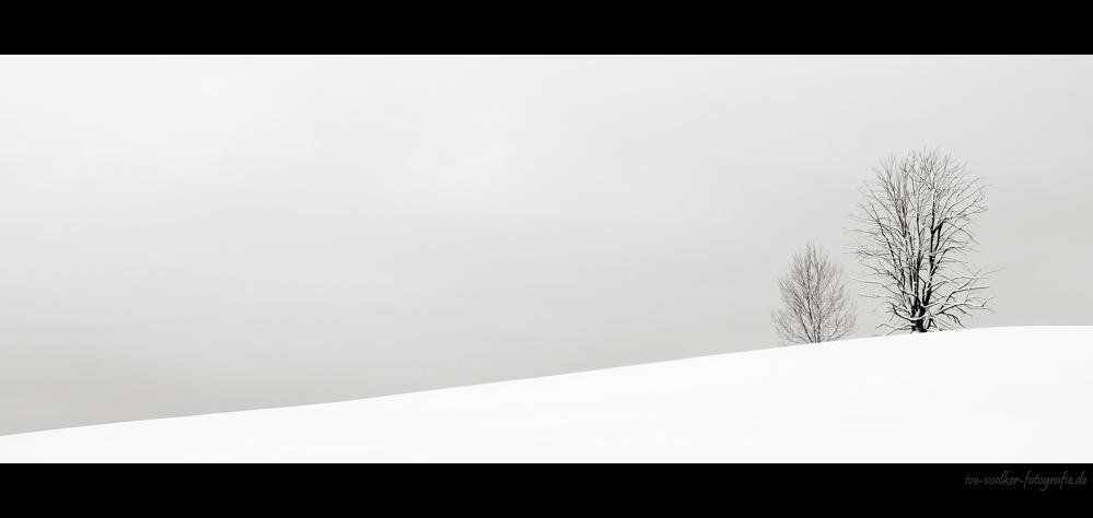 Winter FineArt #12