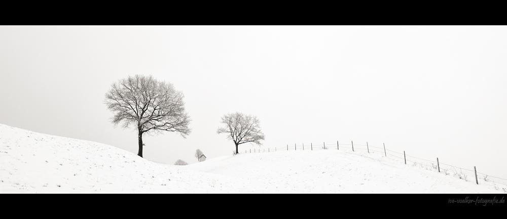 Winter FineArt #16