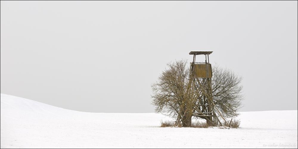 Winter FineArt #17