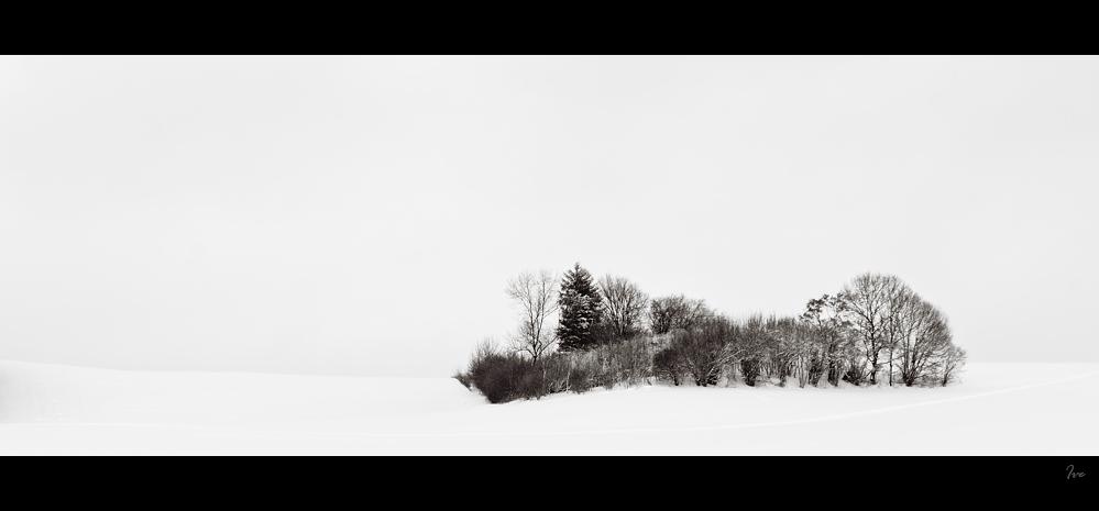 Winter FineArt #2
