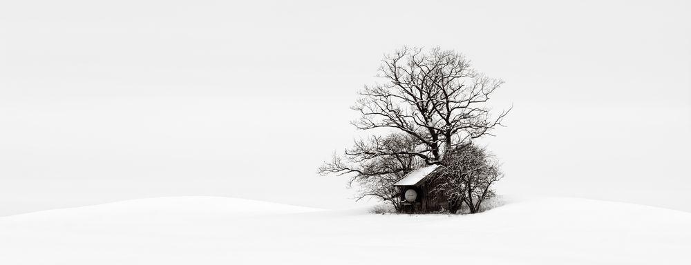 Winter FineArt #8
