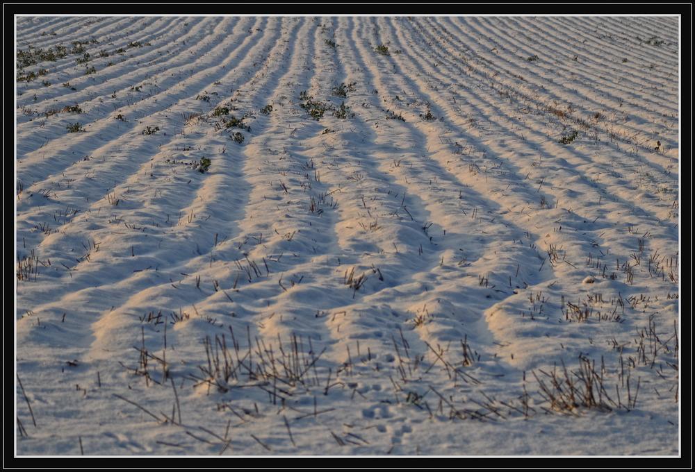 Winter-Grafik