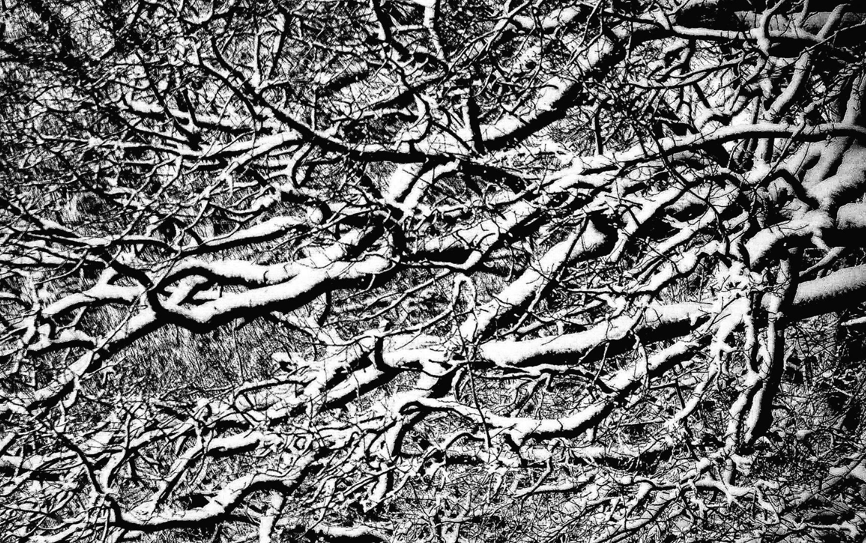 Winter-Grafik II
