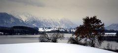 Winter Hues - Wintertöne