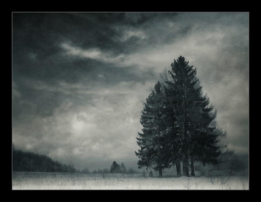 Winter II.
