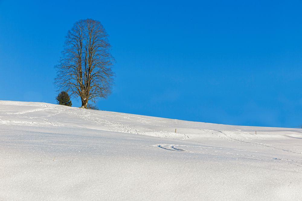 Winter im Ausseerland in der Steiermark