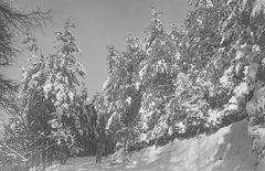 Winter im Bergischen Land. ..............120_2747