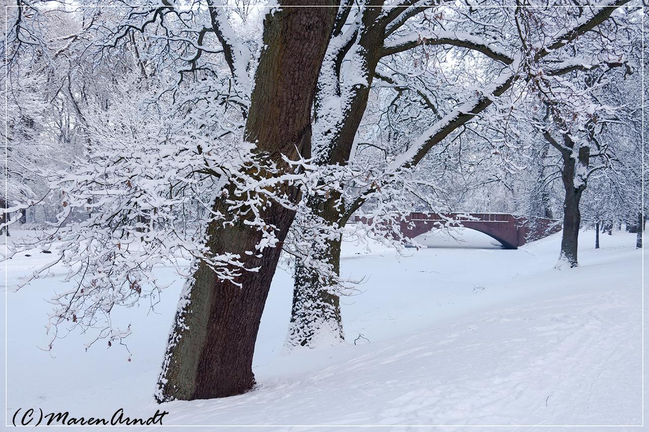 Winter im Bremer Bürgerpark