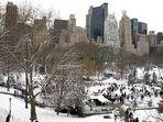 Winter im Central Park - 1