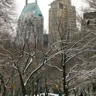 Winter im Central Park - 2
