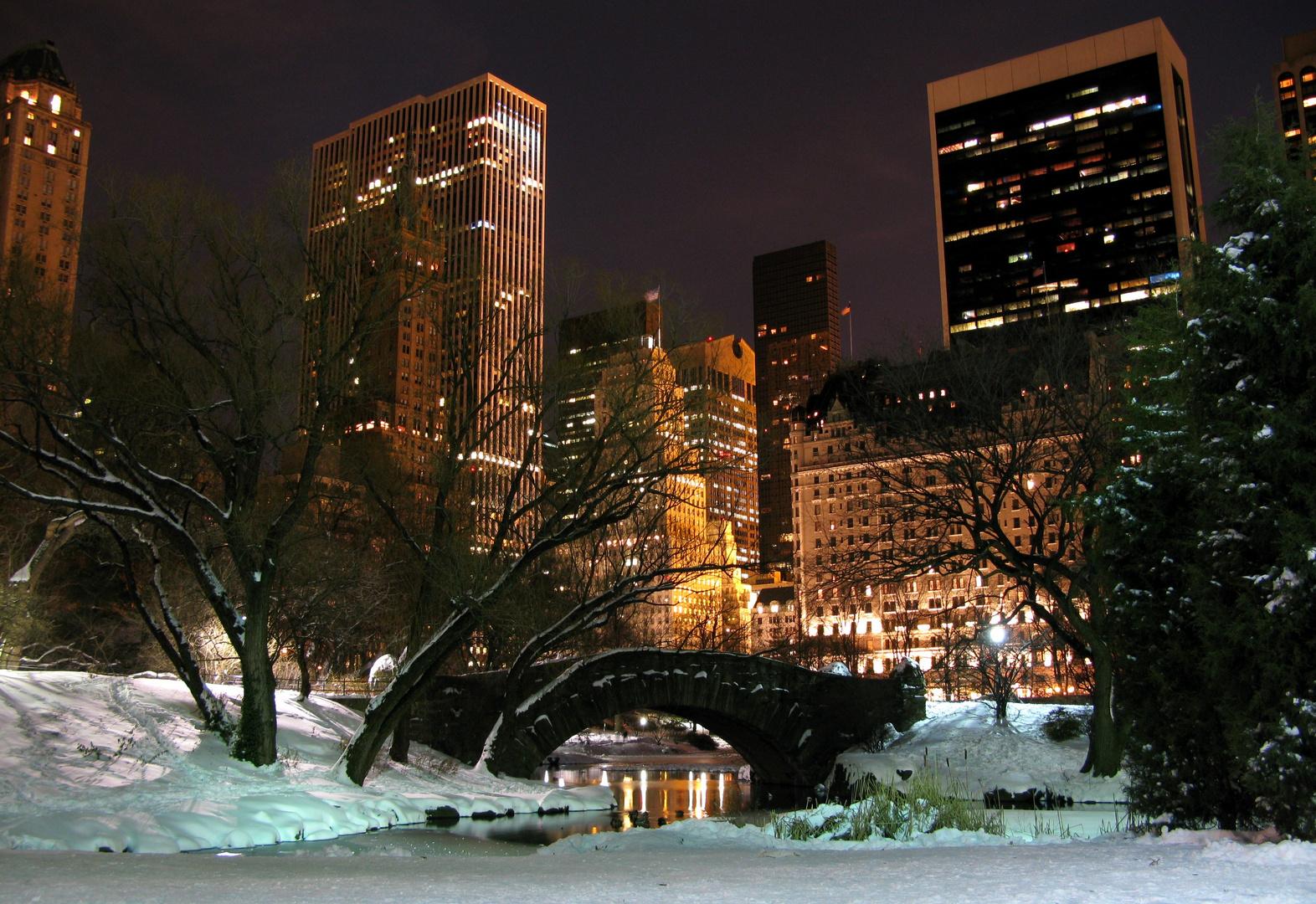 Winter im Central Park - 20. Dezember 2009