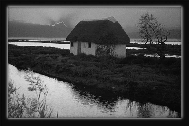 Winter im Delta