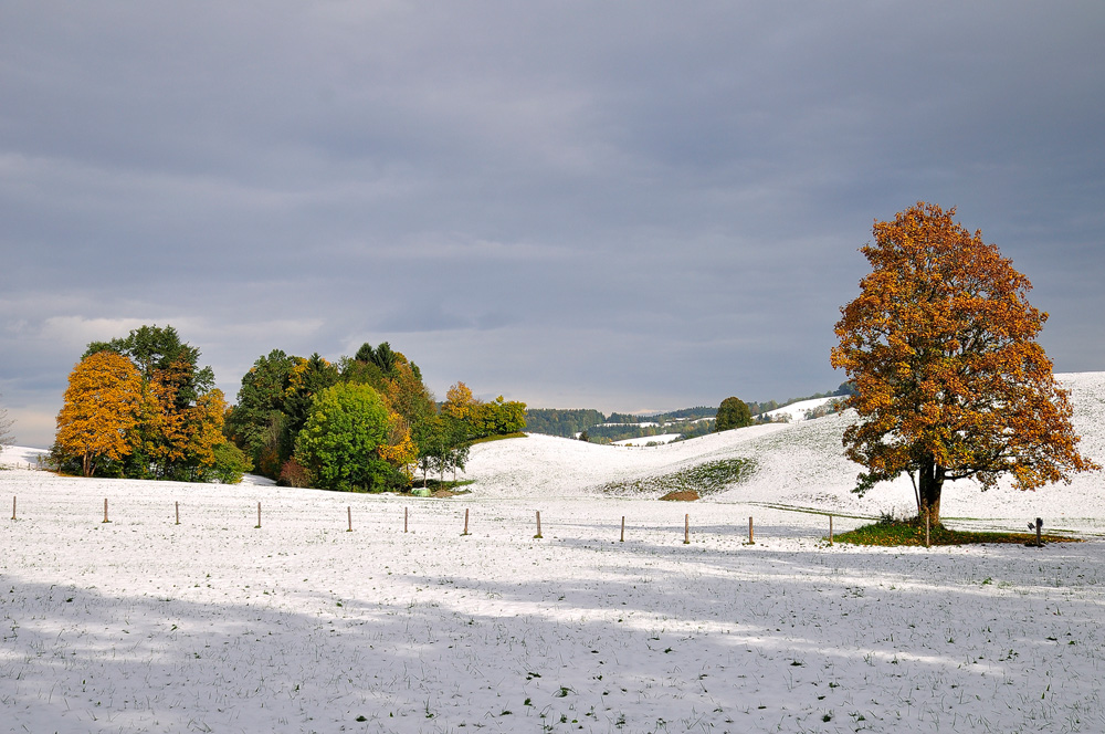 Winter im Herbst (2)