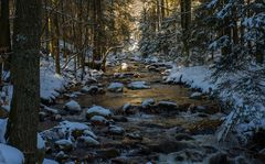 Winter im Ilsetal