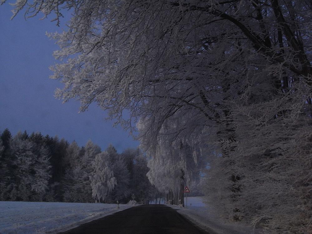 Winter im Kreis Höxter