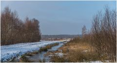Winter im Moor