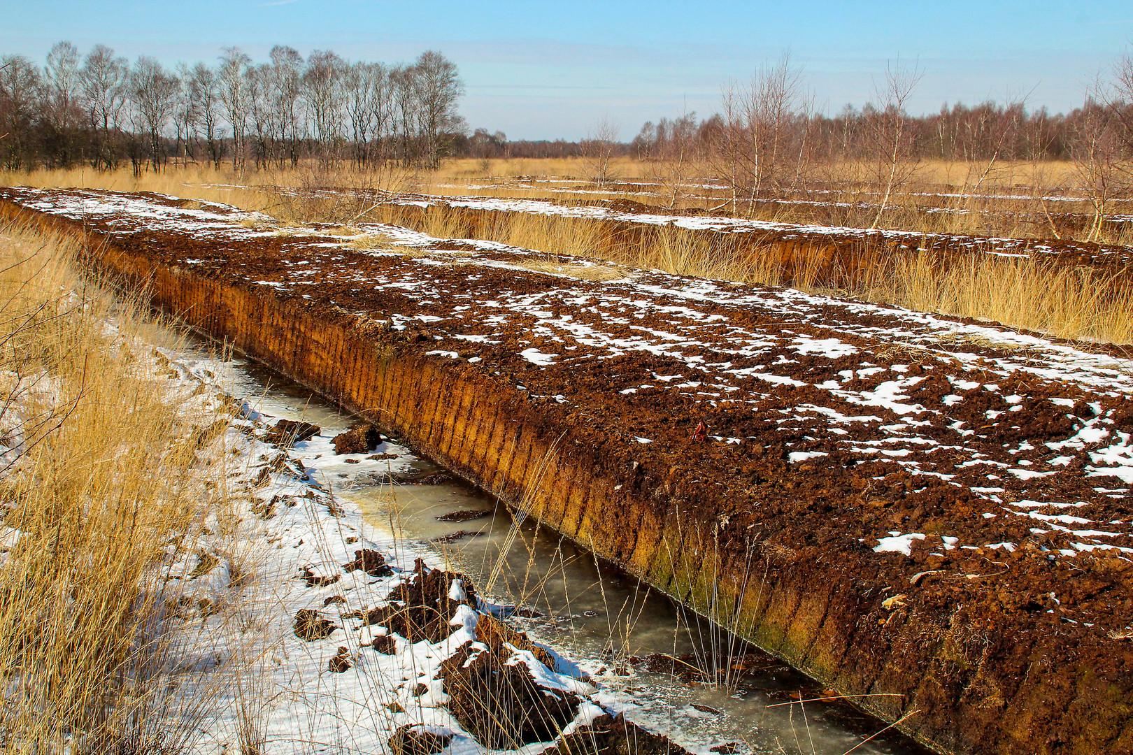 Winter im Moor - die Arbeit ruht