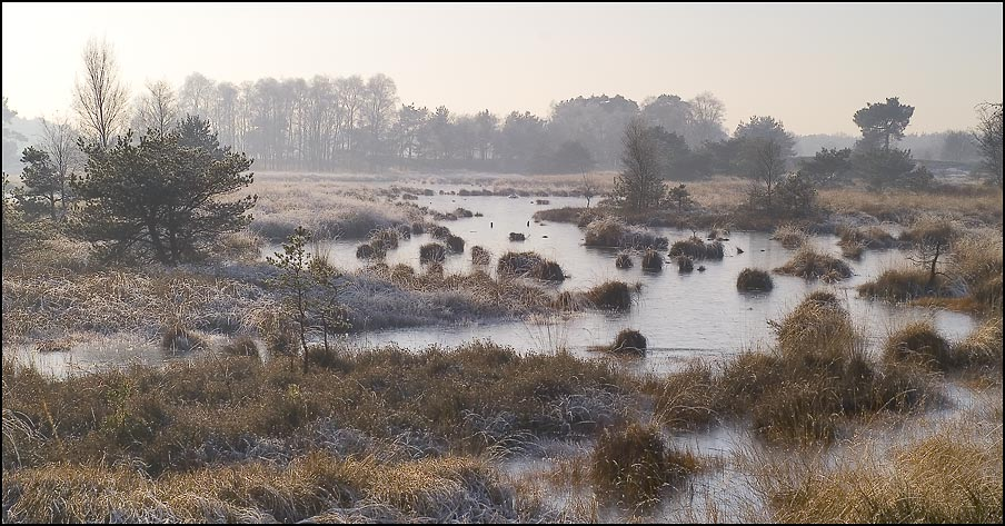 Winter im Naturpark Kampina