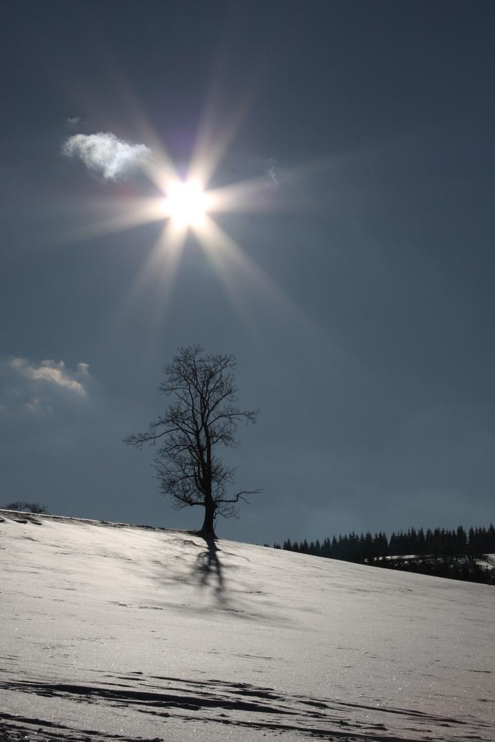 Winter im Ost-Erzgebirge