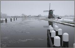 Winter im Polder 0020