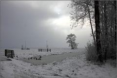 Winter im Polder 0105
