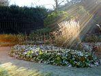 Winter im Schloßgarten