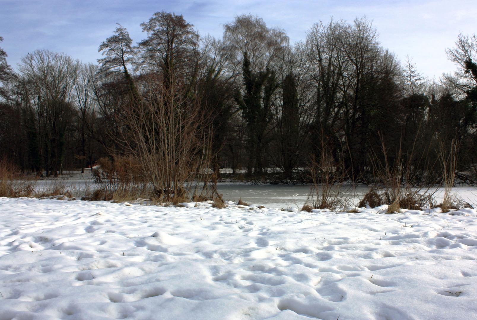 Winter im Schlosspark