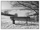 Winter im Schönbuch (2)
