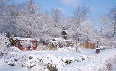 Winter im Schrebergarten Hasenheide