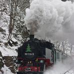 Winter im Spechtritz-Grund