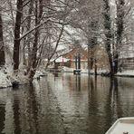 Winter im Spreewald - 2