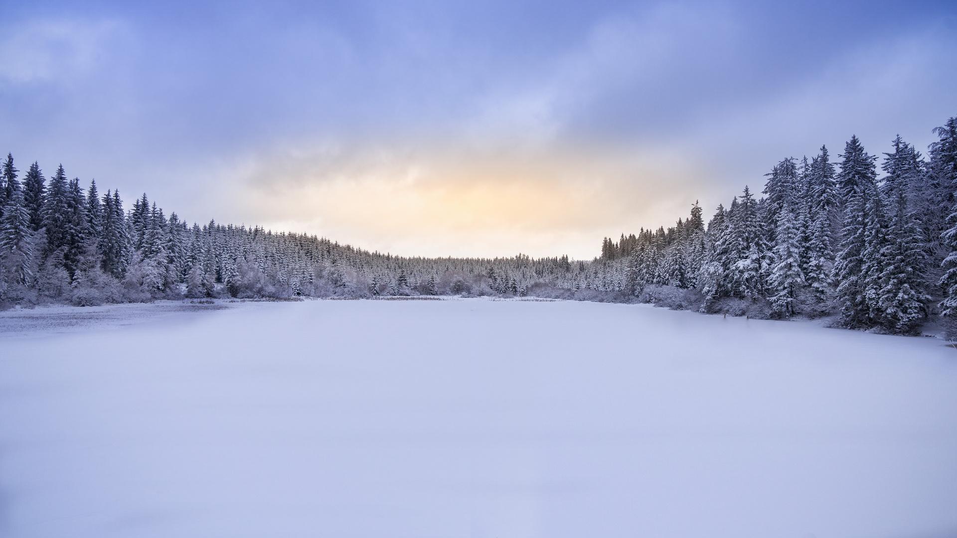 Winter im Tannermoor