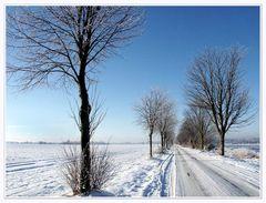 Winter im Teufelsmoor ...