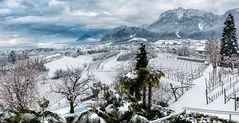Winter im Überetsch