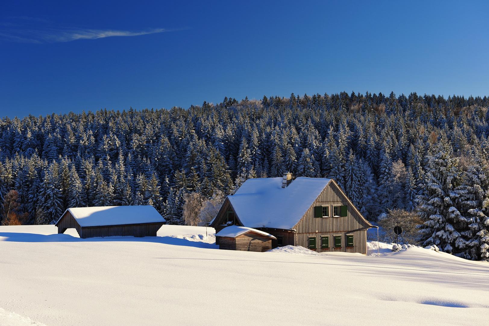 Winter im Vogtland III