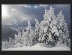 Winter im Waadländer Jura