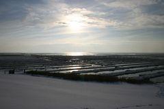 Winter im Wattenmeer 1