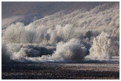 Winter im Weserbergland... - oder: ...draußen regnet es jetzt...