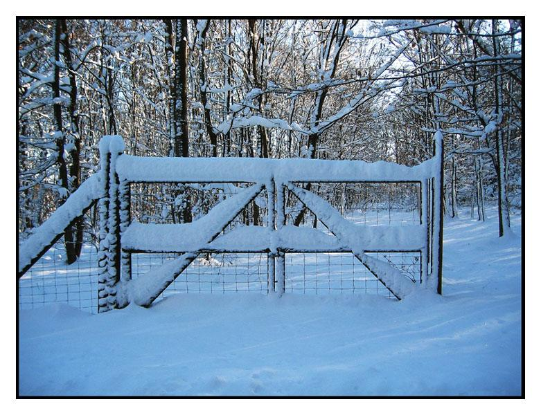 Winter im Wienerwald (3)