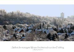 Winter im Wohngebiet