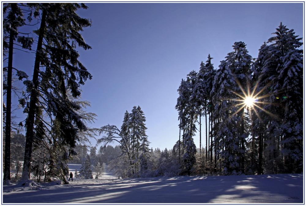 Winter im Zürcheroberland